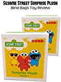 Review: Sesame Street Surprise Plush Blind Bags Toy Review Image