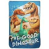 Disney Pixar Childrens Kids The Good Dinosaur Fleece Blanket (39in x 59in) (Multi Colored)