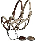 Showman Horse Engraved Silver Show Halter with Pink Rhinestones. Comes with Matching Chain Leather Lead. Showmanship Western