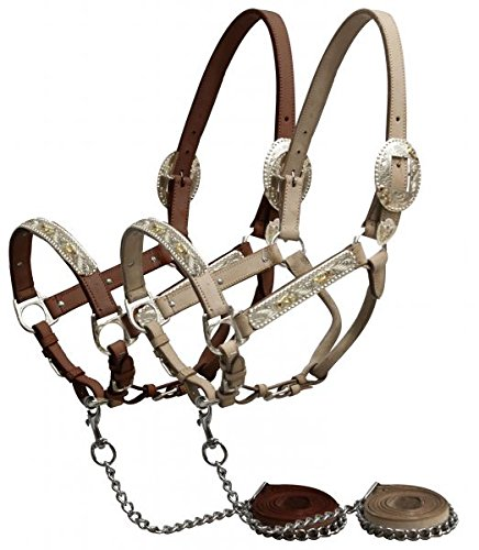 Showman Horse Engraved Silver Show Halter with Pink Rhinestones. Comes with Matching Chain Leather Lead. Showmanship Western (Light Oil) ()