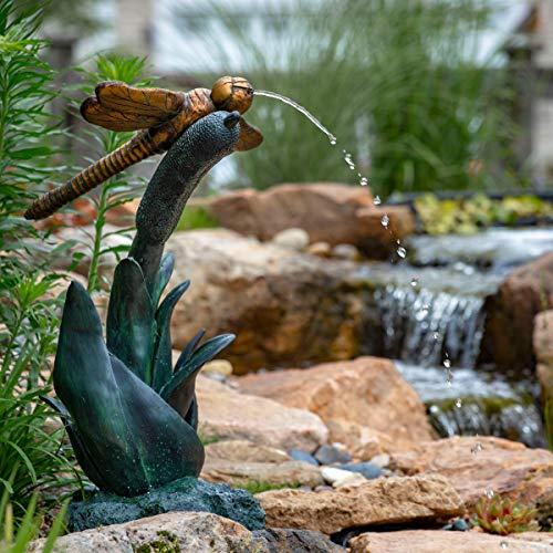 (Aquascape Dragonfly Spitter Fountain for Ponds and Water Gardens | 78303)