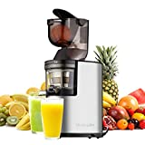 Juicer Slow Masticating Juicer Extractor, 3'' Wide Chute Cold Press Juice Machine, 250W AC Motor and Reverse Function, Easy Cleaning, W/ Juicer Jug and Brush, High Nutrient Fruit and Vegetable Juice