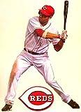 "Joey Votto Mini FATHEAD + Cincinnati Reds Logo Official MLB Vinyl Wall Graphics 7"" INCH"