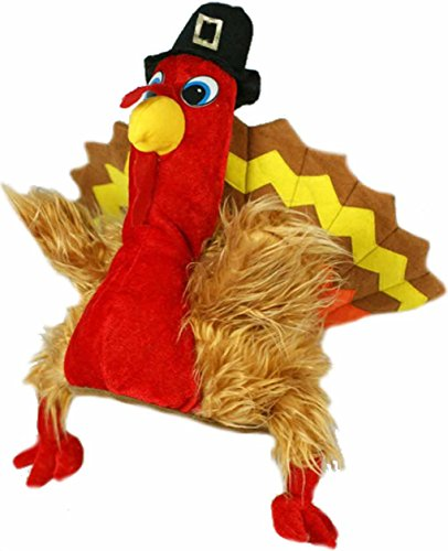 Forum Novelties Men's Novelty Turkey Hat, Multi, One (Turkey Costume Adult)