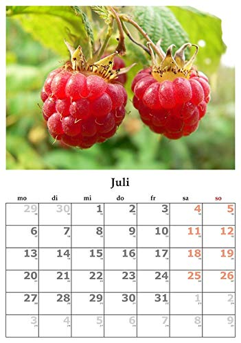 Home Comforts Framed Art for Your Wall July Month July 2015 Calendar Vivid Imagery 10 x 13 Frame