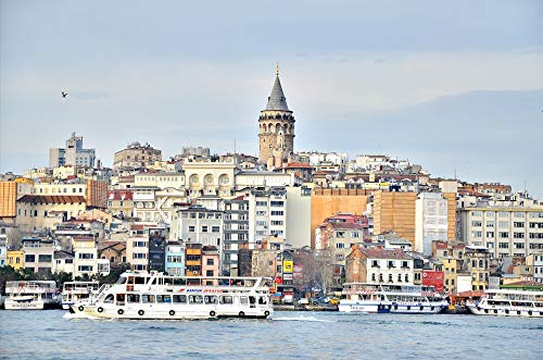 - Home Comforts Framed Art for Your Wall Istanbul Turkey Tower Galata Vivid Imagery 10 x 13 Frame