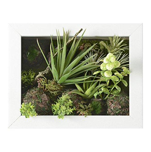 3D Artificial Flowers Wall Hanger Succulent Plants Aloe Green Leaves Grass Moss Stone with Imitation Wood Photo Frame Shape Vase Home Decoration, White Frame, 7.87 in9.84 in by Artificial Flower-Wall Hanger (Image #1)
