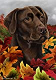 Chocolate Labrador – Tamara Burnett Fall Leaves Large Flags