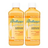Brilliance for Spas Metal and Scale Control - 1 pt - 2 Pack