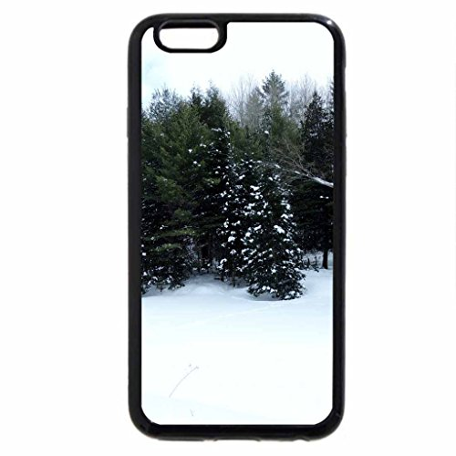 iPhone 6S Case, iPhone 6 Case (Black & White) - evergreens in a park in winter