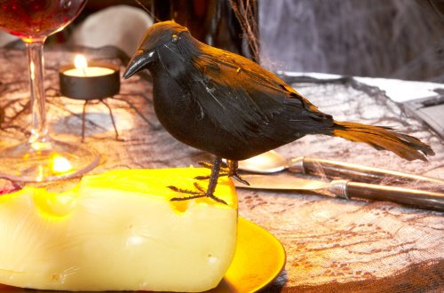 Hitchcock Birds Costume (Feathered Raven Halloween)