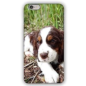 Springer Spaniel Dog Puppy iPhone 6 Plus Armor Phone Case