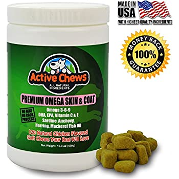 Healthy looking shiny coat with irritation for Fish oil for dogs dry skin
