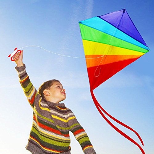 HAPPYTOY Rainbow Diamond Kite - 47 inch Easy Flyer Rainbow Kites for Kids and Adults with 300ft Line Great Beginner Kite