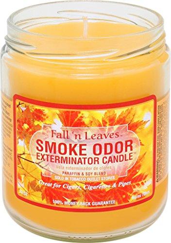 Fall Leaf Candles - Smoke Odor Exterminator 13oz Jar Candles (Fall N Leaves, 1)