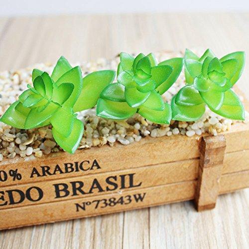 Green Kitchen Jeddah: Dutch Brook 5Pcs Different Succulents Artificial Cactus