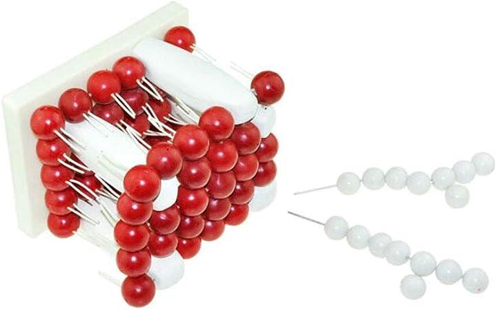 Estructura biofilm Modelo - Membrana Celular Modelo - Modelo ...