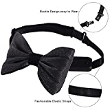 Light Up Bow Tie, Rechargeable - Normal Size LED