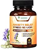 Premium Anxiety and Stress Relief Supplement - Natural Herbal Formula to Promote Calm, Positive Mood with Ashwagandha, L-Theanine, Lutein, Rhodiola, Hawthorne by Nature's Nutrition - 60 Veg Capsules