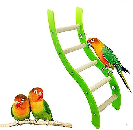 CWZJ Juguetes de Loros, Juego Escalera pájaro Loros Juguete rastreo de Juguete para el Entrenamiento de Mascotas: Amazon.es: Deportes y aire libre