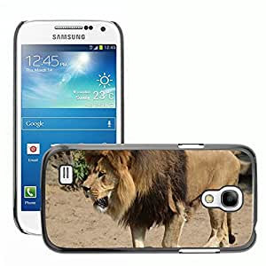 Hot Style Cell Phone PC Hard Case Cover // M00115255 Lion King Predator Big Cat Cat // Samsung Galaxy S4 Mini i9190