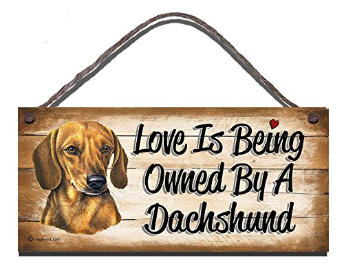 Dachshund Wooden Funny Sign Wall Plaque Gift Present Love is Being Owned By A Dachshund -