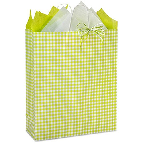 Apple Green Gingham Paper Shopping Bags - Queen Size - 16 x 6 x 19in. - 150 Pack by NW