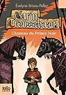 Garin Trousseboeuf, tome 3:L'Anneau du Prince Noir par Brisou-Pellen