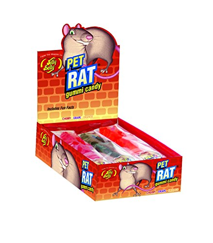 Jelly Belly Gummi Pet Rat, 3-oz, 12 Pack (Jelly Rat)