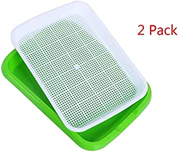 2 Dailydanny Seed Sprouter Tray BPA Free Nursery Tray for Seedling Planting Great for for Garden Home Office