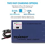 Tenergy RC Battery Charger for NiMH/NiCd 7.2V-12V 6S-10S Battery Packs, Smart Charger for RC Cars, RC Airplanes, Airsoft Batteries, Compatible with Standard Tamiya/Mini Tamiya/Alligator Clip Connector