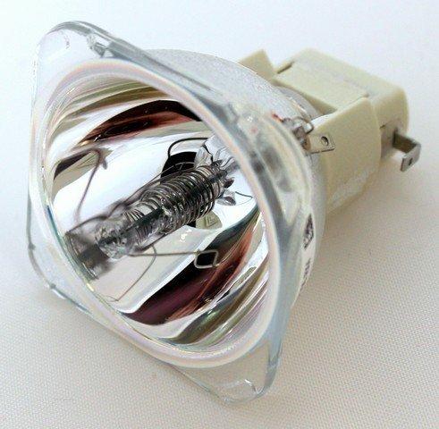 Original Manufacturer BenQ LCD Projector Lamp:SP820 (Benq Light Bulb Lamp)