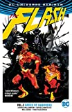 The Flash, Volume 2: Speed of Darkness