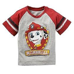 Paw Patrol Marshall Toddler Shirt Gray