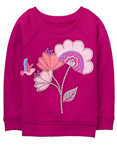 Gymboree Baby Girls Long Sleeve Hummingbird Pullover, Berry, - Cardigan Gymboree Sweater