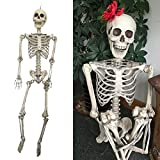 THEE Scary Skull Bone Party Human Skeleton Anatomical Model Halloween Decoration Height 90cm/35""