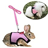 Bunny Kitten Harness No Pull Cat Leash Stylish Vest Harness for Small Animal Adjustable Soft Breathable Walking Harness Set