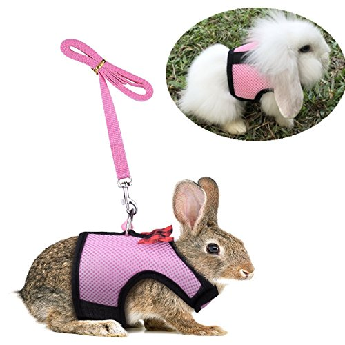 Rabbit Bunny Kitten Harness No Pull Cat Leash Stylish for sale  Delivered anywhere in USA