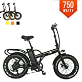Bpmimports F-15X BPM 750watts 13ah +RACK Quality Fat Tire 48v Electric Bicycle Folding 20′ Bike Review