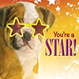 You're a Star!, Struik Inspiration Staff, 1415321183