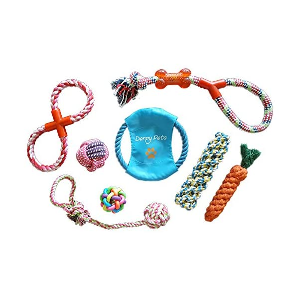 Derpy Pets Dog Toys 8-Pack Rope Chew Toy Set – Great for Teething, Separation Anxiety, and Tug of War Click on image for further info.