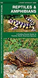 Reptiles & Amphibians: A Folding Pocket Guide to Familiar North American Species (A Pocket Naturalist Guide)
