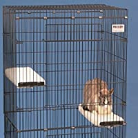 Large Cat House & Enclosure, This Sturdy And Spacious Cat Enclosure Offers Safety And Comfort For Feline Friends And Other Small Animals.