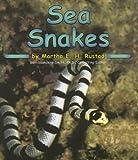 Sea Snakes (Ocean Life)