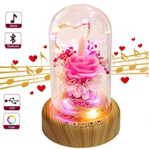 Pink Rose Night Light – SWEETIME Real Preserved Rose in Glass Dome, Preserved Rose Flower Lamp with Bluetooth Speaker, Forever Flowers Rose Gift for Her on Mother's Day, Birthday, Valentine Day.