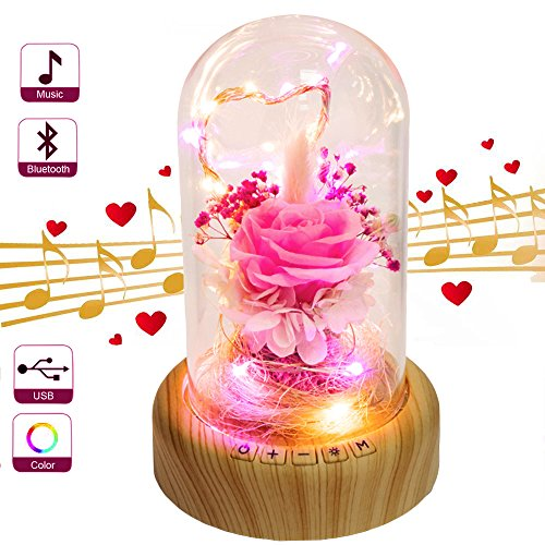 SWEETIME Enchanted Rose Bedside Lamp, Preserved Rose Flower in Glass Dome, Handmade Fresh Rose Night Light, Gift for her in Birthday, Mother's Day(Bluetooth Speaker & Pink Rose). - Mothers Day Pink Rose