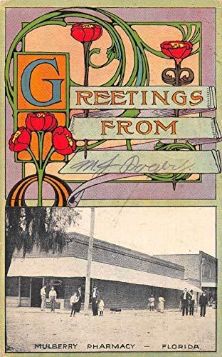 Mulberry Florida Pharmacy Greetings Vintage Postcard AA2216