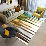 MATGHN Multi Colored Abstract Patterned Area Rug Indoor Living Room Mat Rectangle Carpet,E,200x300cm