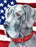 Caroline's Treasures LH9542CHF Great Dane USA Patriotic American Flag Canvas, Large, Multicolor Review