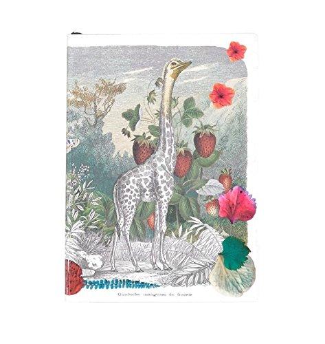 Christian Lacroix Feriaノートブックルールドページ、4.125 X 5.875インチ、128 ( 19543 ) B00UJAX940